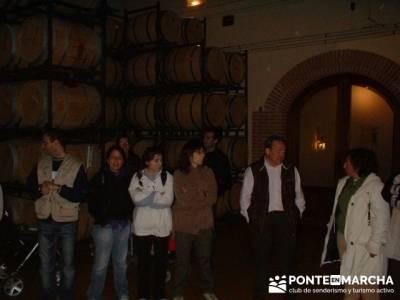 Ribera del Duero - Bodega denominación origen Ribera de Duero; rutas senderismo madrid; excursiones